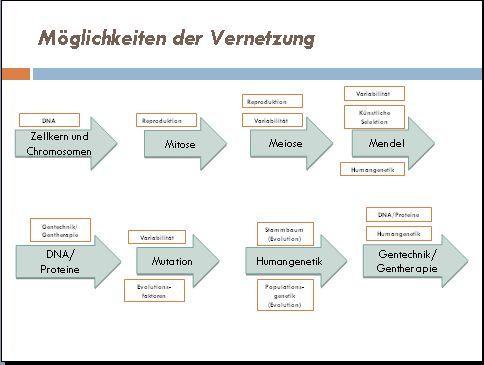Einführung Humangenetik Klasse 9/10