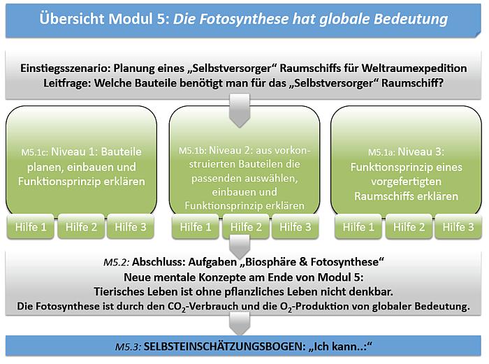 Modul 5: Die Fotosynthese hat globale Bedeutung