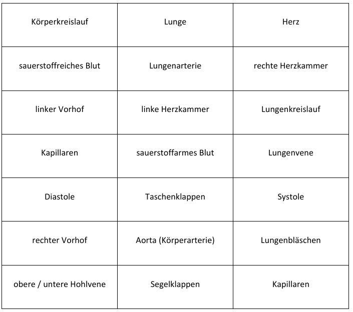 Erfreut Arbeitsblatt Auf Das Kreislaufsystem Fotos - Mathe ...