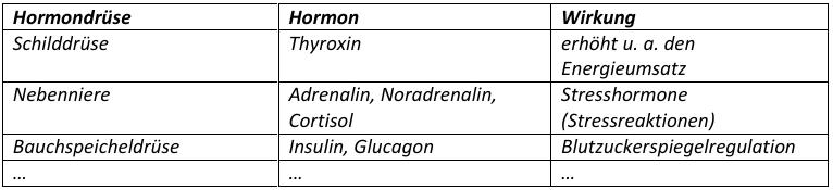 Hormone – Kommunikation mit Botenstoffen