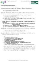 Lösungshinweise zu Arbeitsblatt 6a