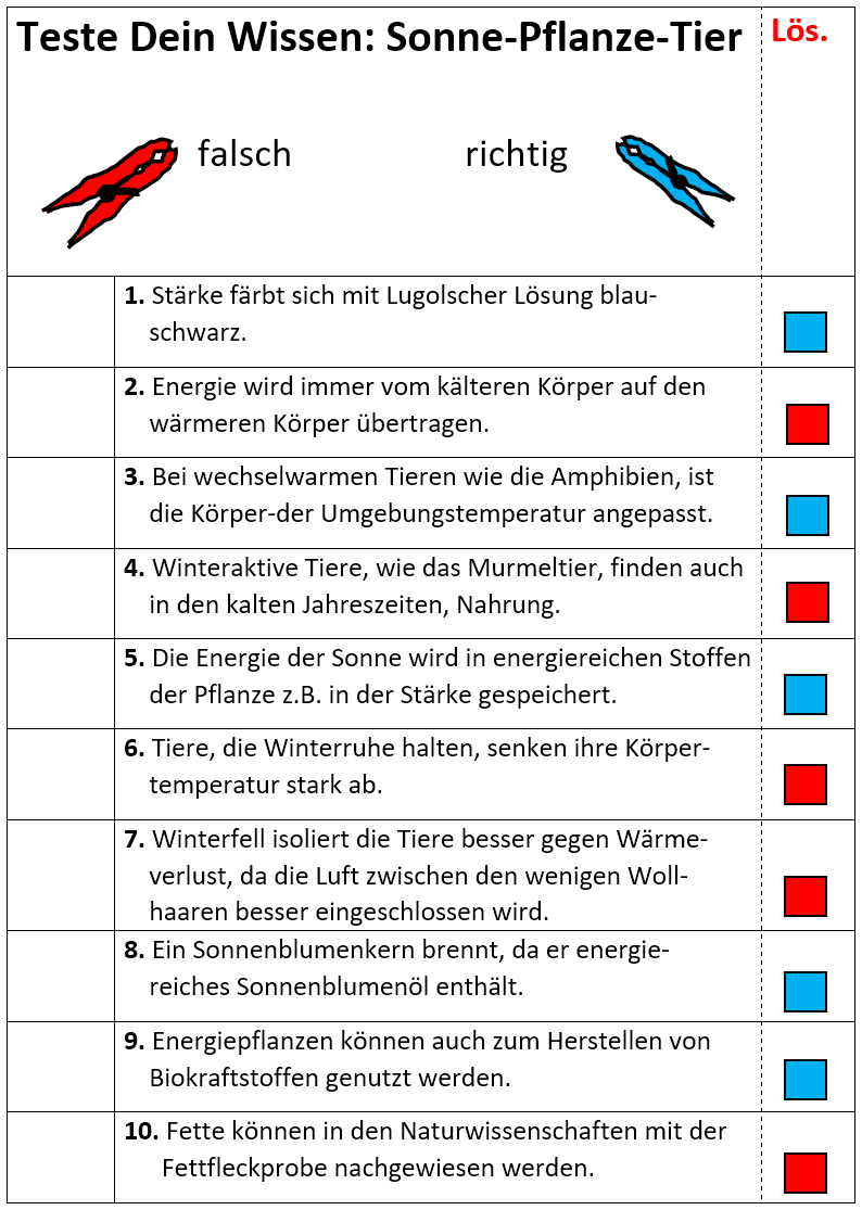 Fein Z Kartenvorlage Galerie - Beispiel Anschreiben für Lebenslauf ...