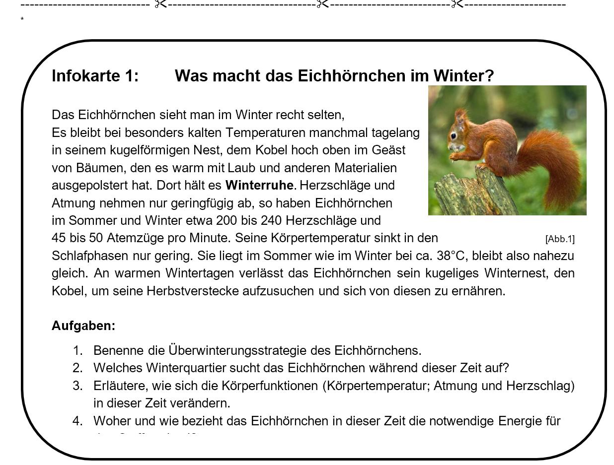 Infokarten Winterruhe