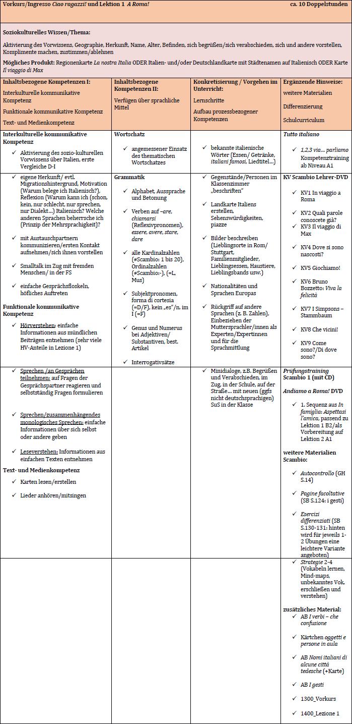 Beispielcurriculum Scambio 1